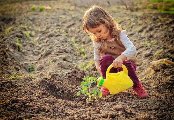 Tu Bishvat_Planting Trees